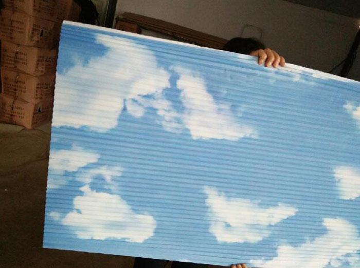 阳光房遮阳帘,玻璃阳光房专用遮阳帘
